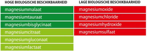 Magnesium Malaat met P-5-P magnesium malaat 1